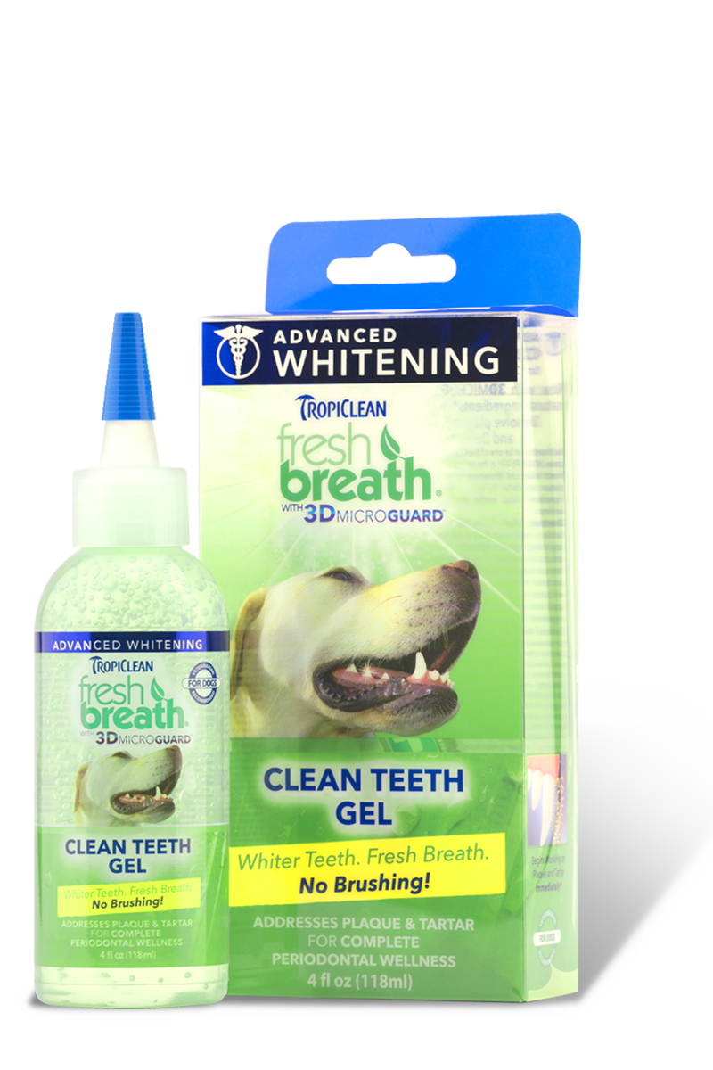 Fresh Breath For Dogs And Cats